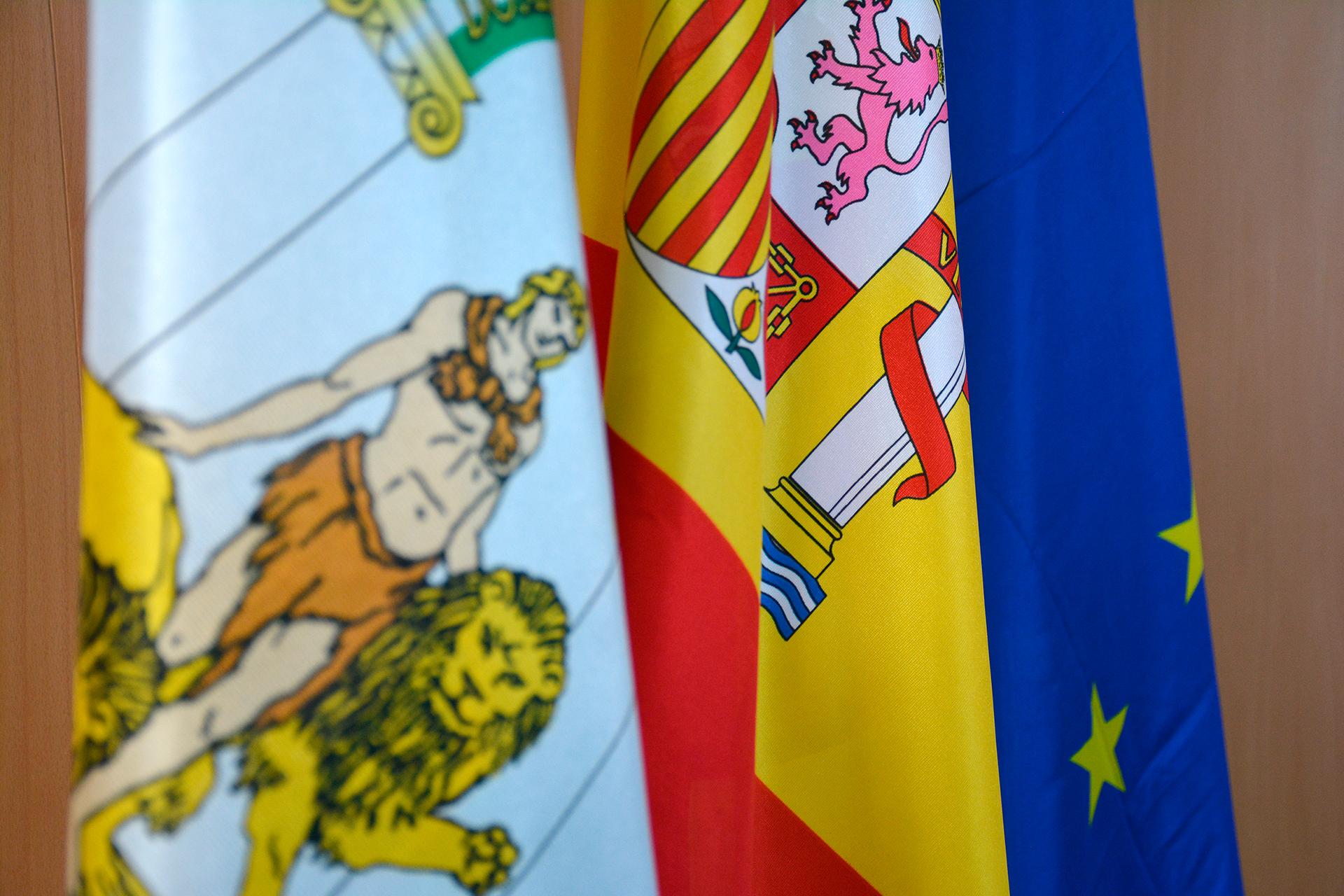 Disposición de banderas oficiales