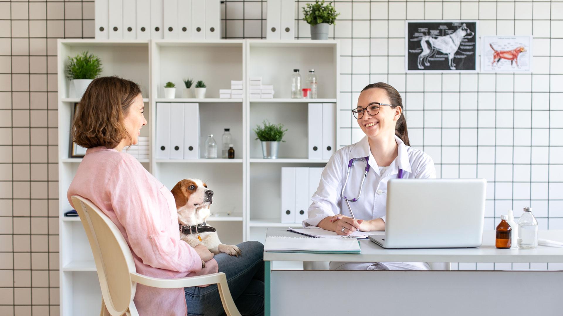 Clínica veterinaria, aparece una mujer con su perro atendida por la veterinaria
