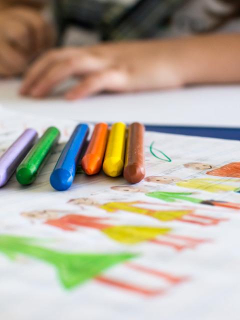 alumno educación coloreando