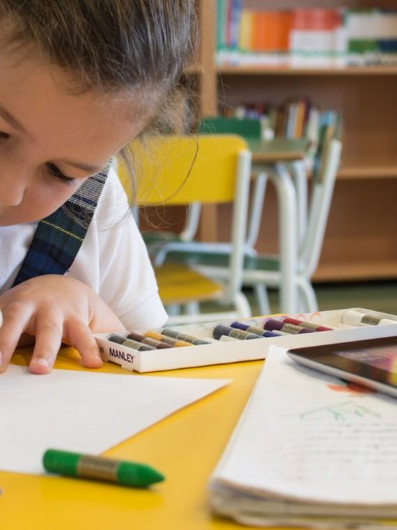 Ciclos Superiores en Educación
