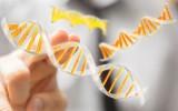 Mano tocando una figura que simula una cadena de ADN